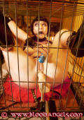 Subslut in a cage fucked by machine.