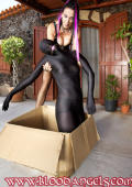 Mail bride delivered in a box ready for your pleasures.